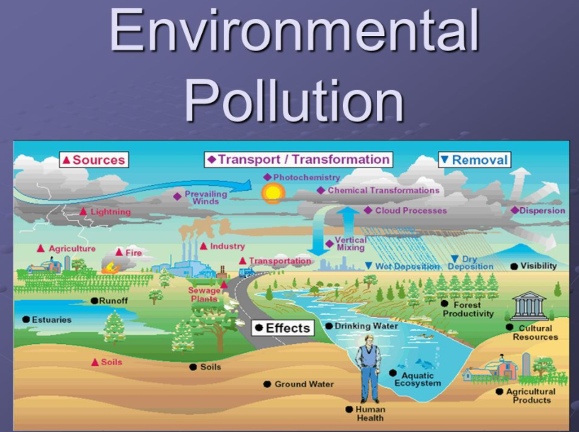 environmental issues in indonesia pdf